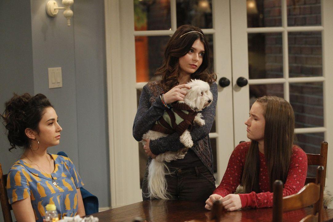 Auf dem Nachhauseweg fährt Mike einen kleinen Hund an, der kein Herrchen zu haben scheint. Seine Töchter Mandy (Molly Ephraim, l.),  Kristin (Alexan... - Bildquelle: 2011 Twentieth Century Fox Film Corporation