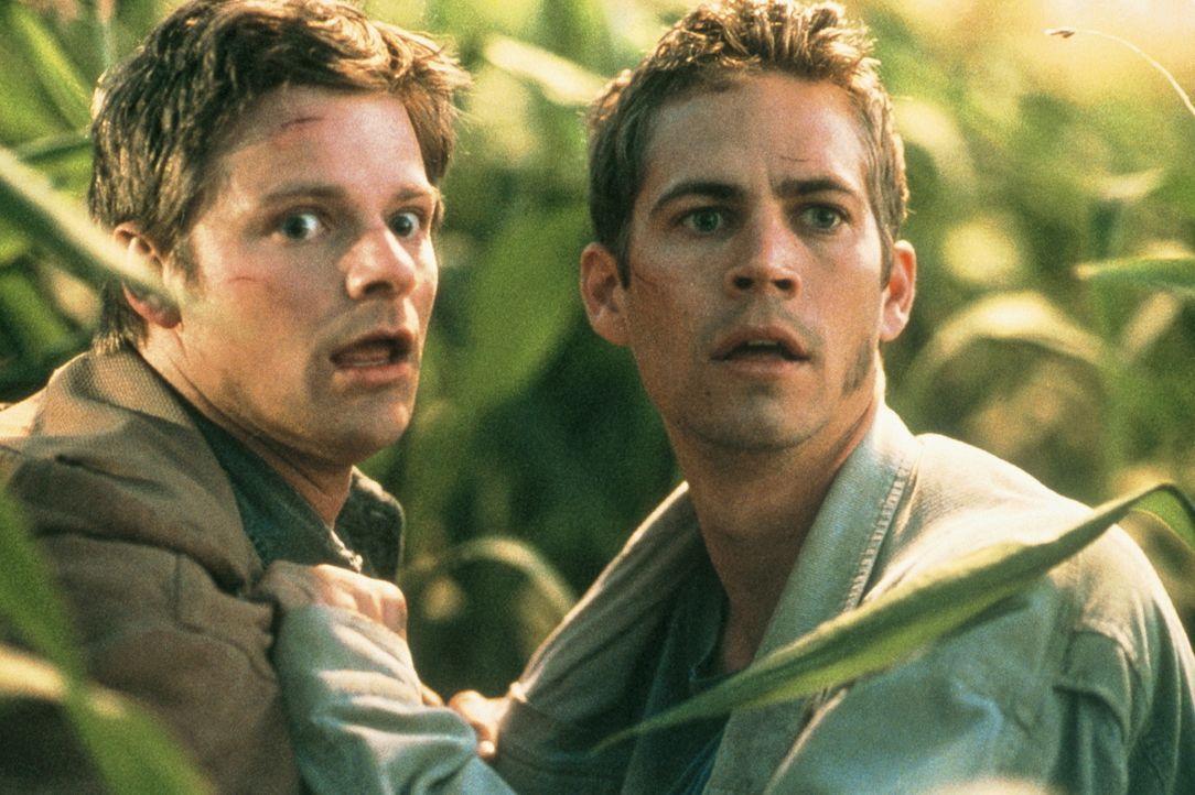 Schon bald müssen Fuller (Steve Zahn, l.) und Lewis (Paul Walker, r.) erkennen, dass der Trucker keinerlei Spaß versteht und deshalb bittere Rache s... - Bildquelle: 20th Century Fox