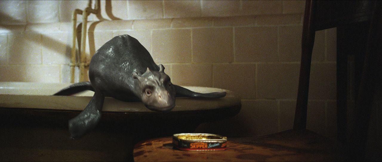 Schon bald entschlüpft dem Ei ein sehr lebhaftes dinosaurierartiges Tier, dem Angus den Namen Crusoe gibt. Das Wesen wächst allerdings mit atemberau... - Bildquelle: CPT Holdings, Inc. All Rights Reserved. (Sony Pictures Television International)