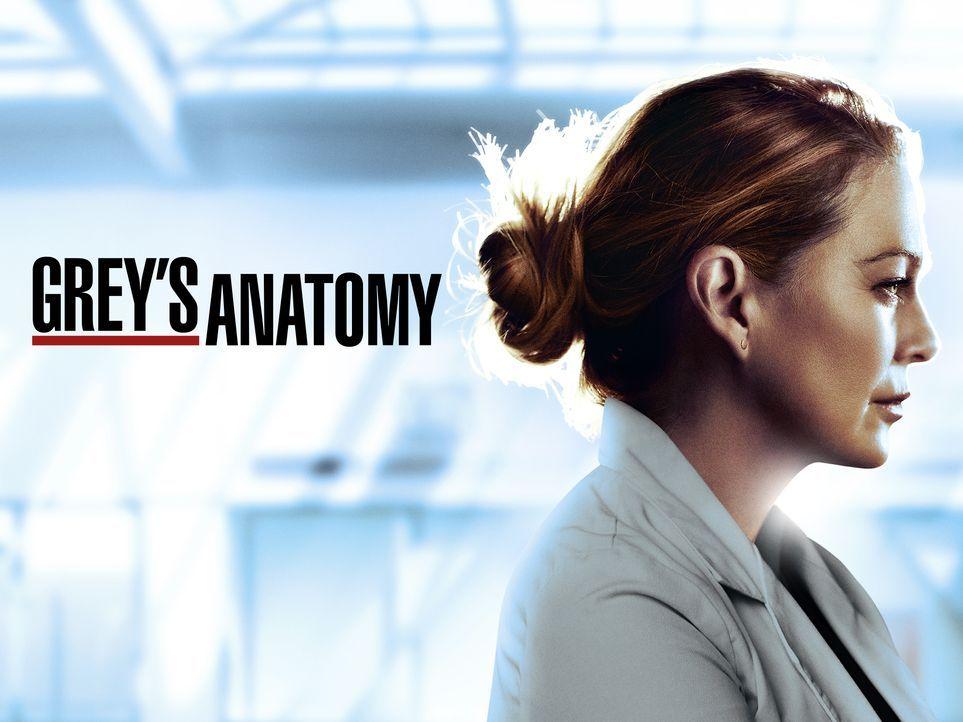 (17. Staffel) - Grey's Anatomy - Artwork - Dr. Meredith Grey (Ellen Pompeo) - Bildquelle: ABC Studios