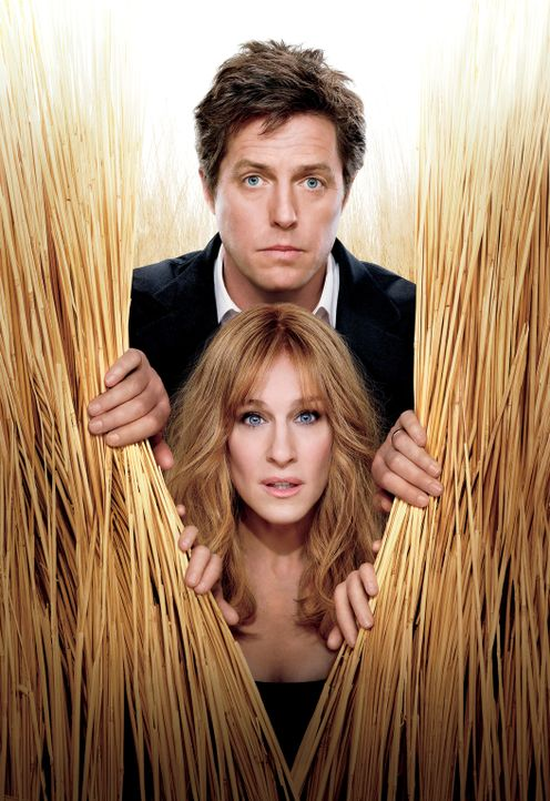 Meryl (Sarah Jessica Parker, unten) und Paul Morgan (Hugh Grant, oben) sind ein erfolgreiches New Yorker Vorzeigepaar. Ihr scheinbar perfektes Leben... - Bildquelle: 2009 Columbia Pictures Industries, Inc. and Beverly Blvd LLC. All Rights Reserved.