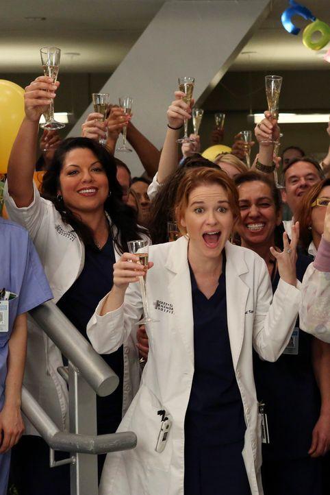 April (Sarah Drew, vorne) und Callie (Sara Ramirez, l.) freuen sich für Cristina, die für den Harper Avery Award nominiert ist ... - Bildquelle: ABC Studios