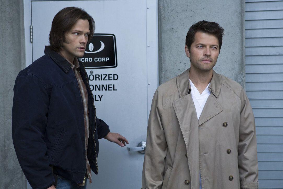 Durch seine Vergangenheit als Engel weiß Castiel (Misha Collins, r.) einige Dinge, die Sam (Jared Padalecki, l.) und seinem Bruder helfen könnten. W... - Bildquelle: Warner Bros. Television
