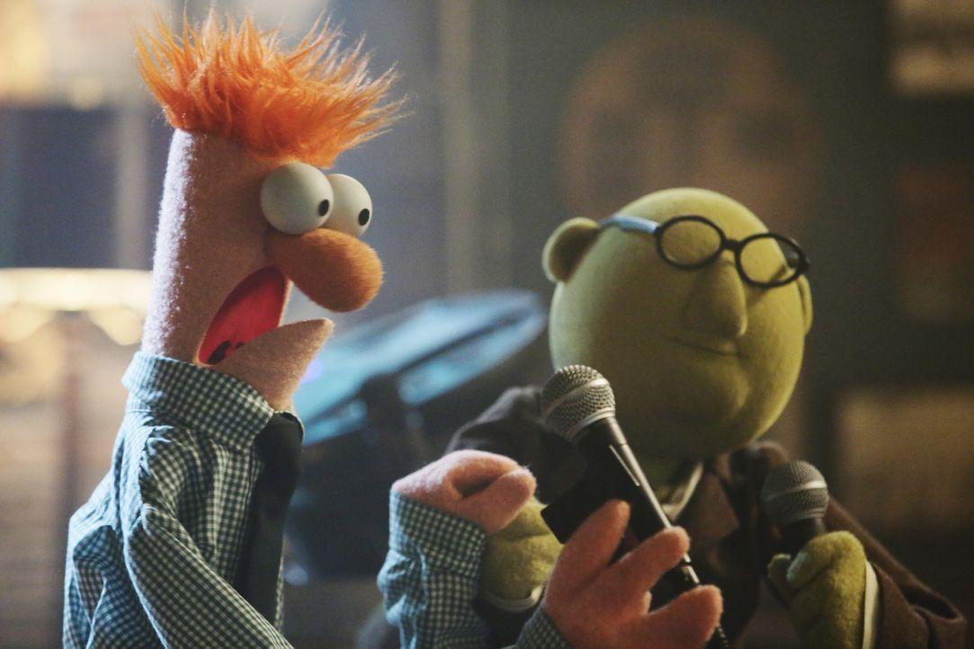 Prof. Dr. Honigtau Bunsenbrenner (r.), Assistent Beaker (l.) und die restlichen Muppets feiern mit Ed Helms (l.) in Rowlfs Kneipe. Ein Abend, den si... - Bildquelle: Nicole Wilder ABC Studios