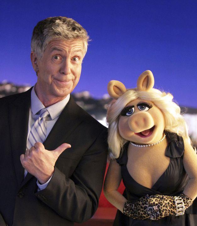 """Der Moderator und Autor Tom Bergeron (l.) muss erkennen, dass er von Kermit aus der Sendung """"Up Late with Miss Piggy"""" genommen wurde. Doch was sagt... - Bildquelle: Andrea McCallin ABC Studios"""