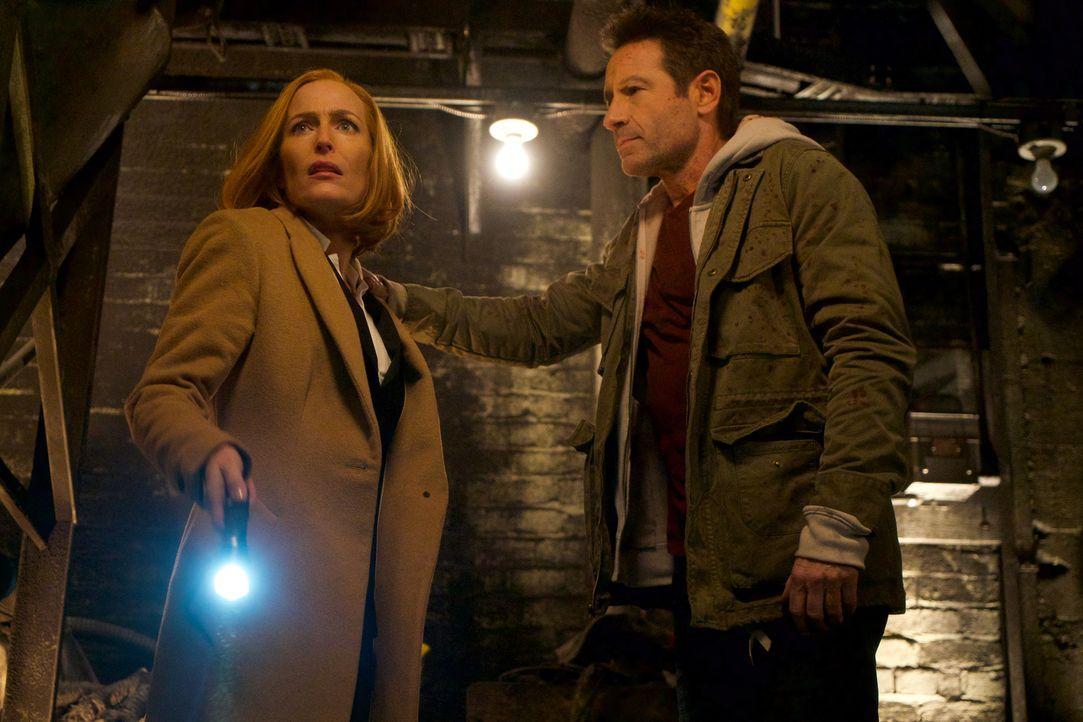 Scully und Mulder setzten alles daran, dass ihr Sohn nicht als Spielfigur im tödlichen Plan des Krebskandidaten missbraucht wird. - Bildquelle: Shane Harvey 2018 Fox and its related entities.  All rights reserved.