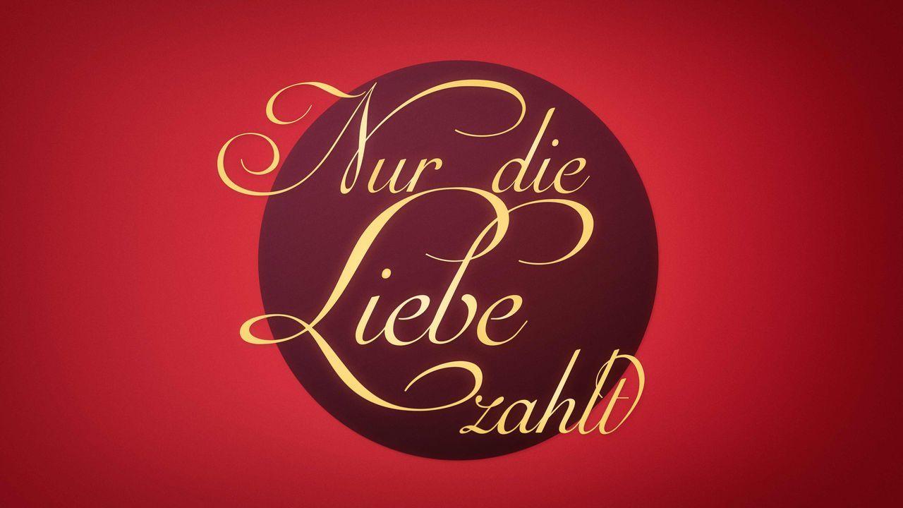ndlz_logo_v06