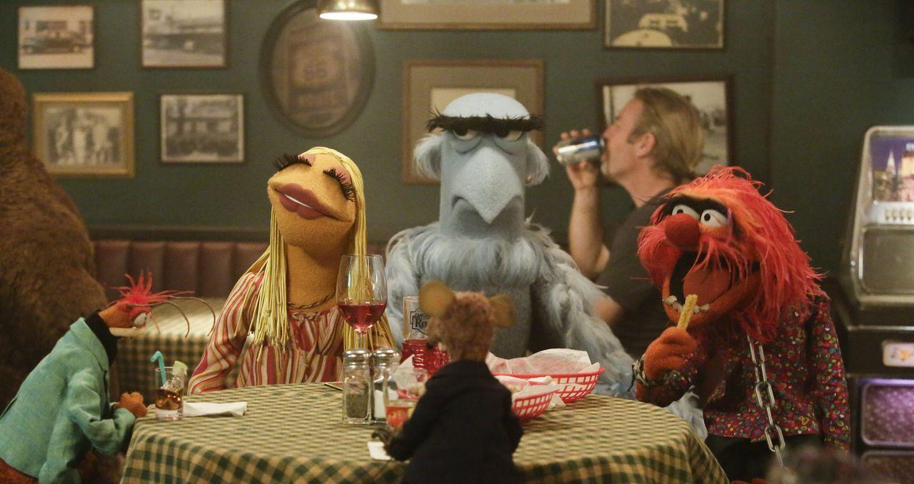 Pepe (l.), Janice (2.v.l.), Rizzo (M.), Sam der Adler (2.v.r.), das Tier und die restlichen Crewmitglieder gehen nach einer neuen Ausgabe von der Sh... - Bildquelle: Nicole Wilder ABC Studios