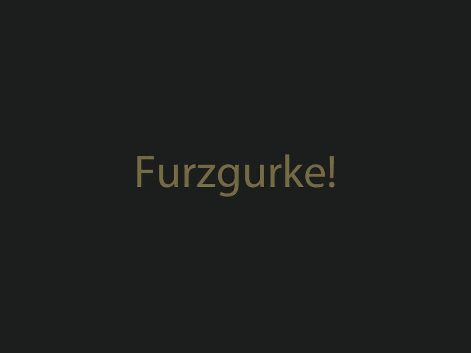 furzgurkejpg 1024 x 768 - Bildquelle: ProSieben