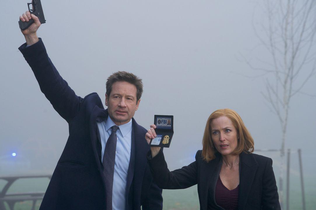 Mulder (David Duchovny, l.) und Scully (Gillian Anderson, r.) müssen im Todesfall eines kleinen Jungen ermitteln, denn im Gegensatz zu der örtlichen... - Bildquelle: Shane Harvey 2018 Fox and its related entities.  All rights reserved.