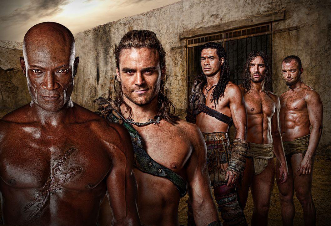 Die Gladiatoren: Gannicus (Dustin Clare, 2.v.l.), Ashur (Nick Tarabay, r.), Barca (Antonio Te Maioha, M.), Drago (Peter Mensah, l.) und Crixus (Manu... - Bildquelle: 2010 Starz Entertainment, LLC