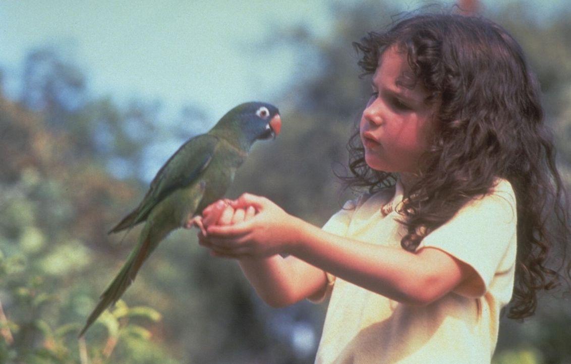 Weil der gescheite Papagei Paulie die kleine Marie (Hallie Kate Eisenberg, r.) einfach plappern lässt, kann sie schon bald ihren Sprachfehler ableg... - Bildquelle: DreamWorks