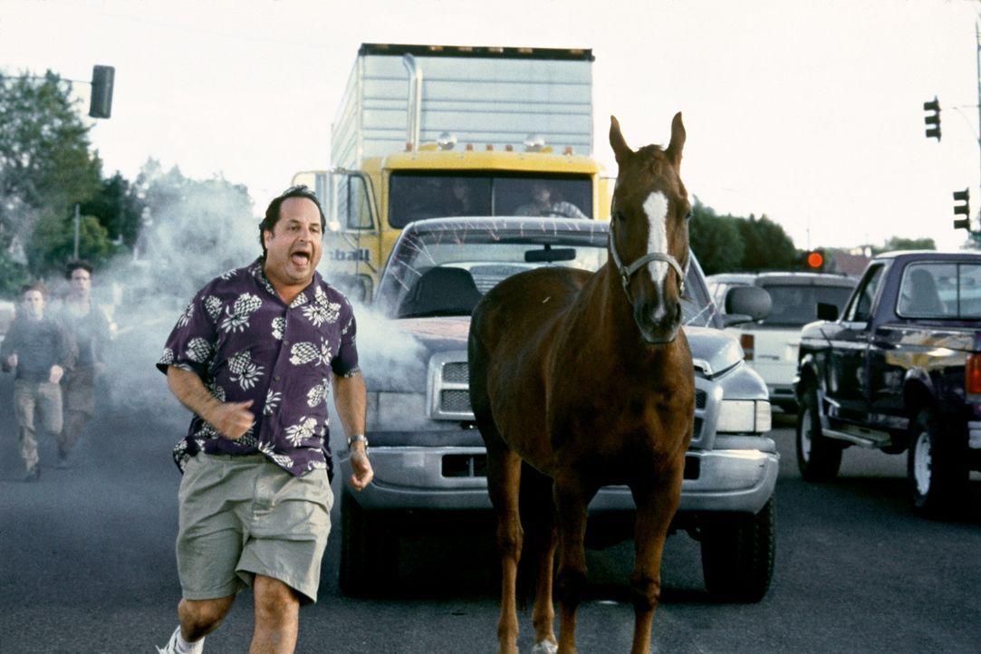 Trotz aller Intrigen und Missgeschicke gibt Randy Pear (Jon Lovitz) nicht auf ... - Bildquelle: Senator Film