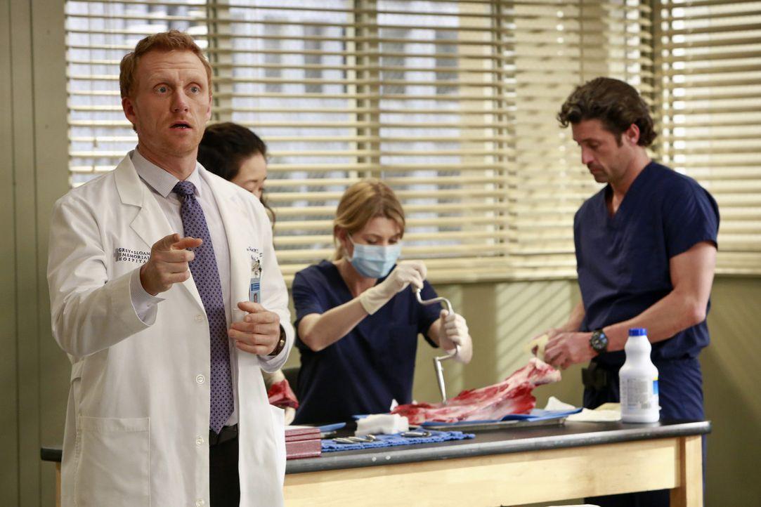 Christina (Sandra Oh, 2.v.l.), Meredith (Ellen Pompeo, 2.v.r.) und Derek (Patrick Dempsey, r.) überlegen, wie sie verschiedene Eingriffe in Syrien... - Bildquelle: ABC Studios