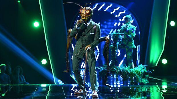the masked singer grashГјpfer
