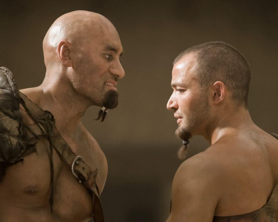 Um die Rangfolge unter seinen Gladiatoren festlegen zu können, veranstaltet Titus Batiatus eine Reihe von Trainingskämpfen. Dagan (Shane Rangi, l.... - Bildquelle: 2010 Starz Entertainment, LLC