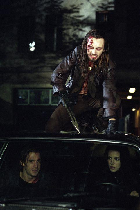 In letzter Sekunde gelingt es der schönen Vampirin Selene (Kate Beckinsale, r.), den jungen Arzt Michael Corvin (Scott Speedman, l.) vor dem gnaden... - Bildquelle: TMG