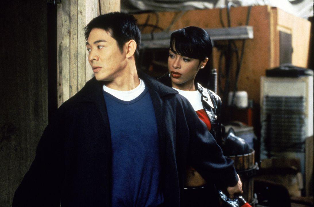 Kaum in den USA angekommen, läuft dem rachedurstigen Han (Jet Li, l.) die hübsche Trish (Aaliyah, r.) über den Weg, die die Tochter des Oberhaupt... - Bildquelle: Warner Bros. Pictures