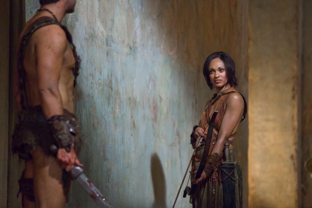 Mit Pfeil und Bogen gegen perfekt ausgerüstete Römer: Naevia (Cynthia-Addai Robinson), die dennoch den Kampf aufnimmt ... - Bildquelle: 2011 Starz Entertainment, LLC. All rights reserved.