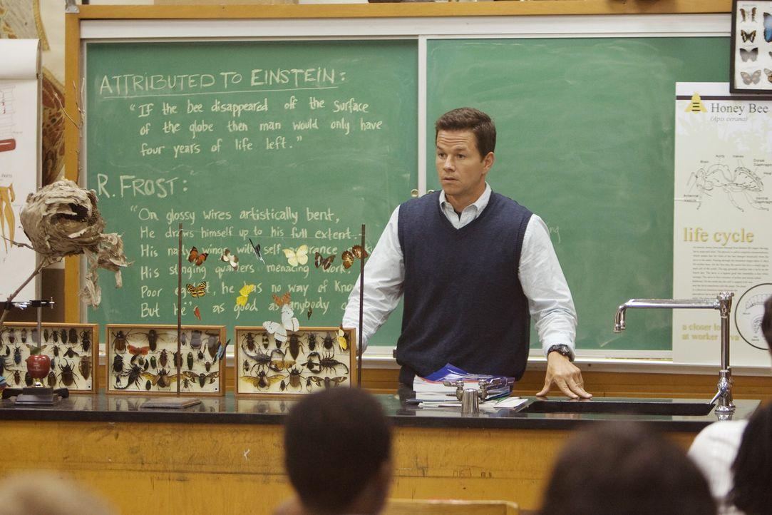 Eben noch hat Elliot (Mark Wahlberg) mit seinen Schülern gerätselt, wieso plötzlich Millionen von Bienen verschwinden, als er erfährt, dass sich... - Bildquelle: 20th Century Fox