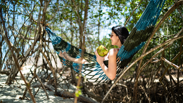Die Kokosnuss – ein Genuss, der gesund und schön macht. Binde Kokosnussöl in...