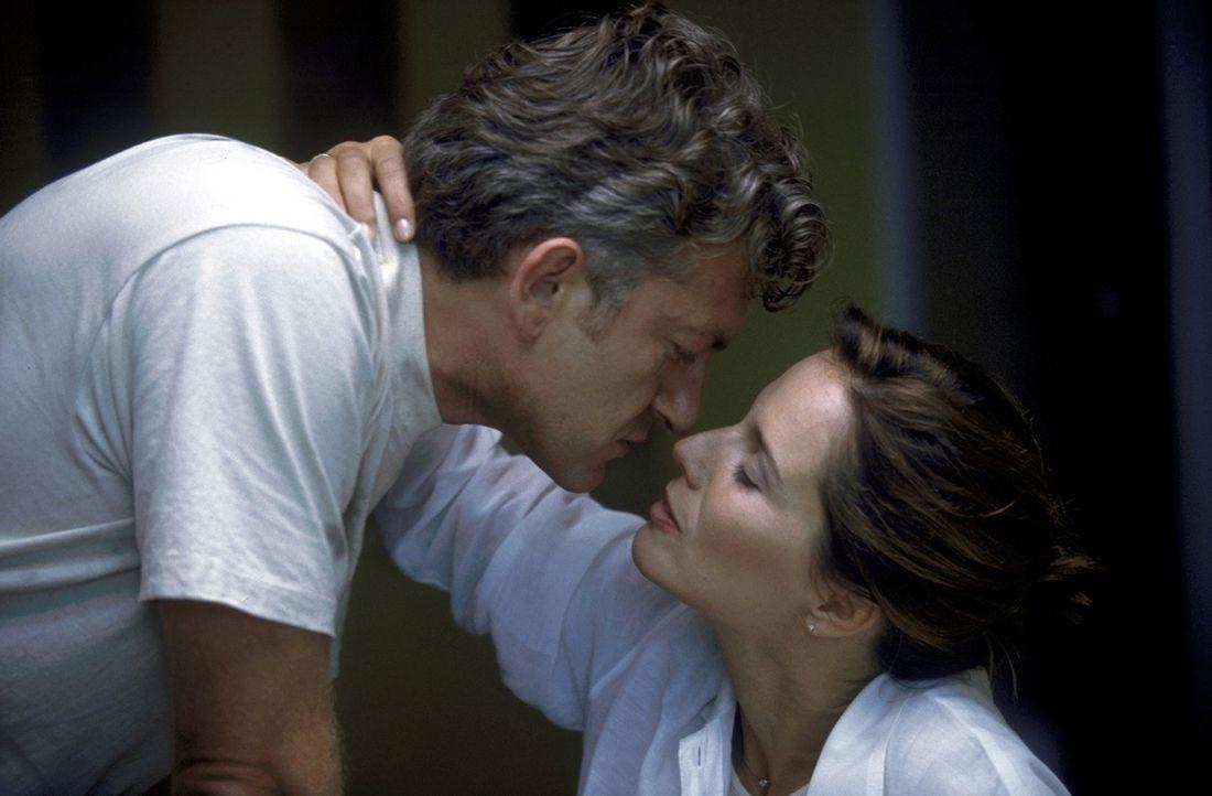 20 Jahre Ehe, doch Britt (Désirée Nosbusch, r.) und David (Dominic Raacke, l.) verbinden nicht mehr die leidenschaftlichen Gefühle ihrer Anfangsz... - Bildquelle: ProSieben