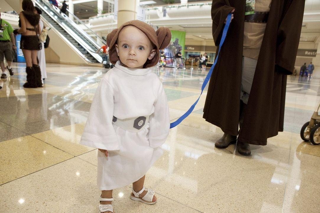 Star-Wars-Day-03-2014-Lucasfilm-Ltd