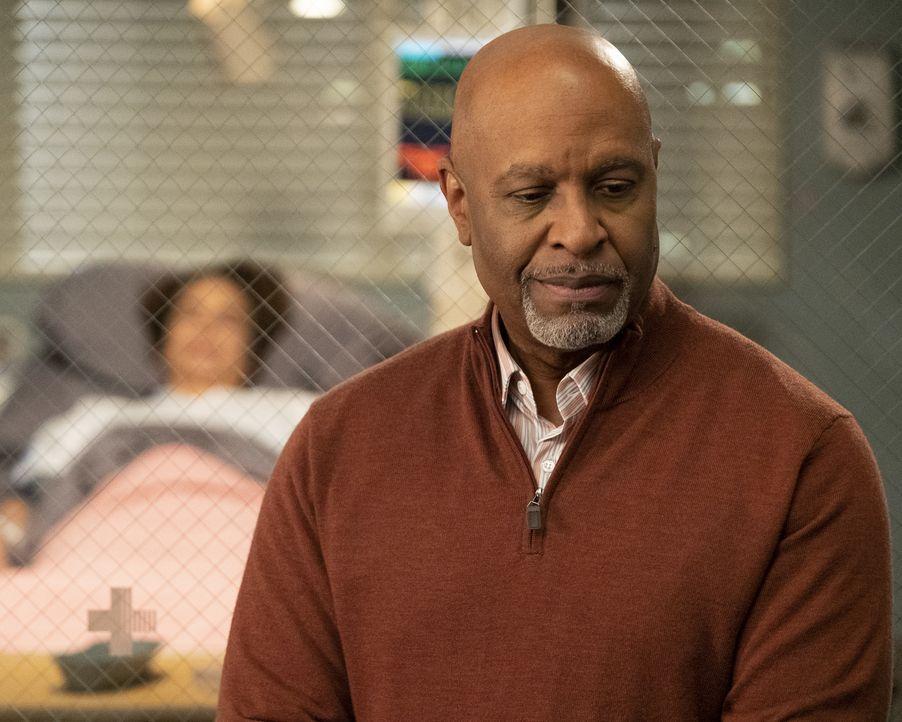 Dr. Richard Webber (James Pickens Jr.) - Bildquelle: Jessica Brooks ABC Studios