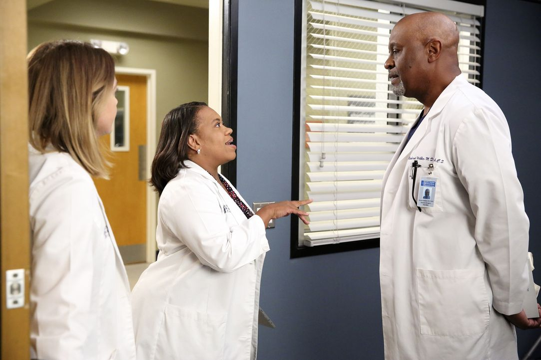 Haben täglich mit ganz besonderen Aufgaben zu kämpfen: Meredith (Ellen Pompeo, l.), Bailey (Chandra Wilson, M.) und Richard (James Pickens, Jr., r.)... - Bildquelle: ABC Studios
