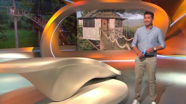Galileo - Galileo - Sonntag: Leben In Einem Baumhaus