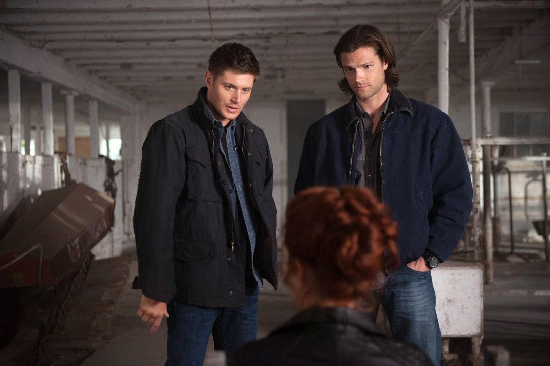 Als Sam (Jared Padalecki, r.) und Dean (Jensen Ackles, l.) bewusst wird, dass sie einen Dämon brauchen, kommt es ihnen ganz recht, dass Abaddon (Ala... - Bildquelle: Warner Bros. Television