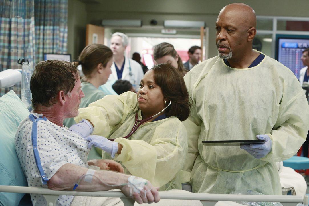 Weil ein Gastanker explodiert ist und dabei viele Menschen verletzt wurden, haben alle die Hände voll zu tun. Auch Miranda (Chandra Wilson, M.) kü... - Bildquelle: ABC Studios