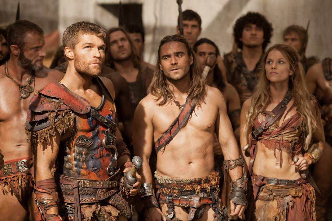 Spartacus (Liam McIntyre, vorne l.), Gannicus (Dustin Clare, vorne M.) und Saxa (Ellen Hollman, vorne r.) sind des ewigen Mordens überdrüssig. Doch... - Bildquelle: 2012 Starz Entertainment, LLC. All rights reserved.