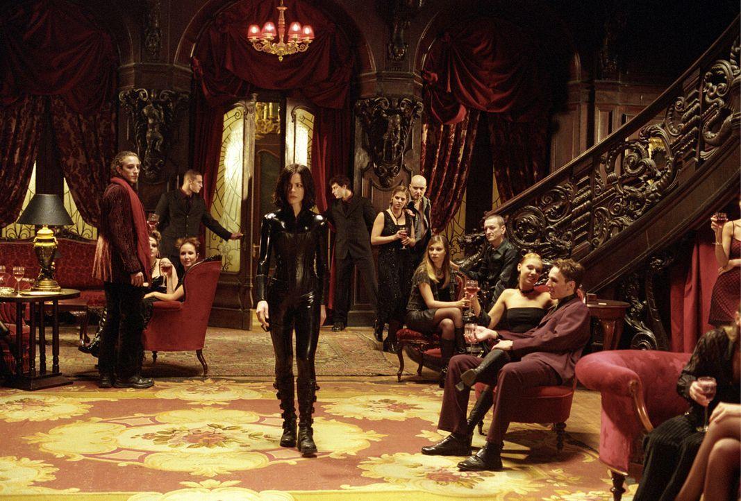 Noch ahnt Vampir-Lady Selene (Kate Beckinsale, M.) nicht, dass nicht alle Vampire und Werwölfe das sind, was sie vorgeben, zu sein ... - Bildquelle: TMG