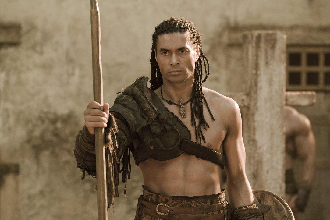 Muss sich den Anweisungen von Drago fügen: Barca (Antonio Te Maioha) ... - Bildquelle: 2010 Starz Entertainment, LLC