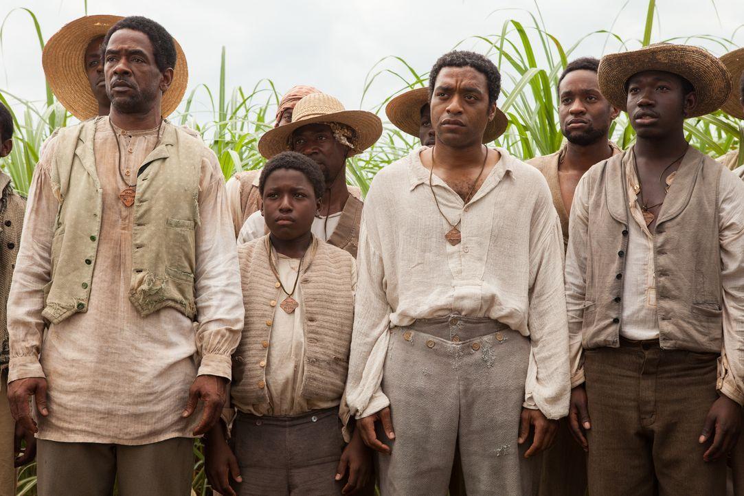 Als der freie Afroamerikaner Solomon (Chiwetel Ejiofor, 2.v.r.) entführt und in die Sklaverei verkauft wird, landet er zusammen mit anderen Sklaven,... - Bildquelle: TOBIS FILM