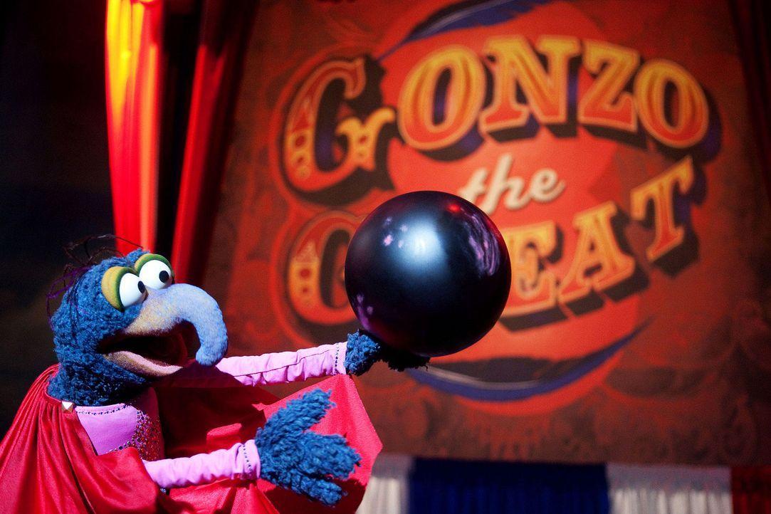muppets-16-disney-enterprises-incjpg 1900 x 1267 - Bildquelle: Disney Enterprises Inc.