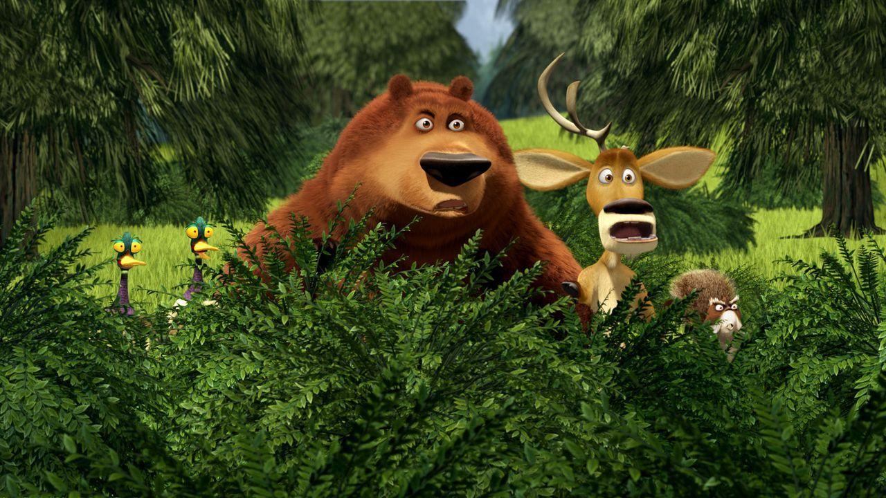 Deni (l.), Serge (2.v.l.), Boog (M.), Elliot (2.v.r.) und McSquizzy (r.) müssen mit ansehen wie ihre Freunde Herr Wiener und Buddy con Campern entf... - Bildquelle: 2008 Sony Pictures Animation Inc. All Rights Reserved.