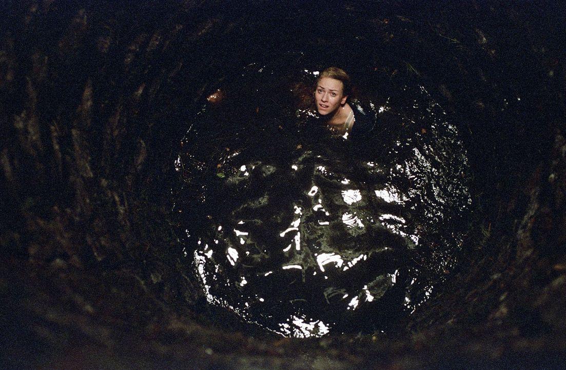 Weiß nicht, wie ihr geschieht: Rachel (Naomi Watts) treibt im Brunnen, in dem vor Jahren Samara ums Leben gekommen ist ... - Bildquelle: DreamWorks SKG