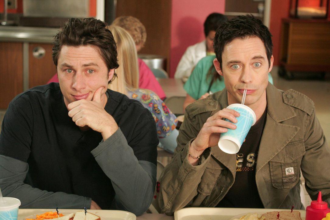 J.D. (Zach Braff, l.) bekommt überraschend Besuch von seinem Bruder Dan (Tom Cavanagh, r.) ... - Bildquelle: Touchstone Television