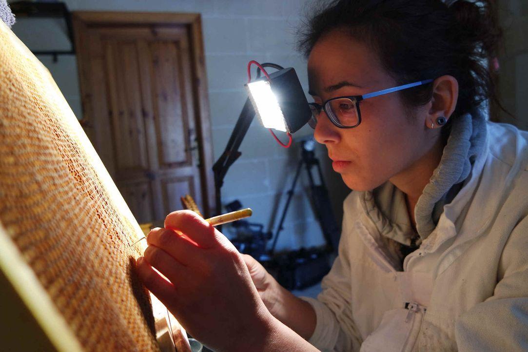 Vorsichtig holt Sarah Ruta in einer Königinnenaufzucht in Malta die Larven aus den Waben. Die Arbeit ist nicht unwichtig, denn ein Aussterben der Bi... - Bildquelle: ProSieben