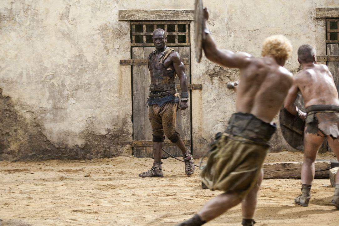 Der Trainer der Gladiatoren, Drago (Peter Mensah, hinten), muss ein strenges Regiment führen, damit seine Kämpfer überhaupt eine kleine Überlebe... - Bildquelle: 2010 Starz Entertainment, LLC