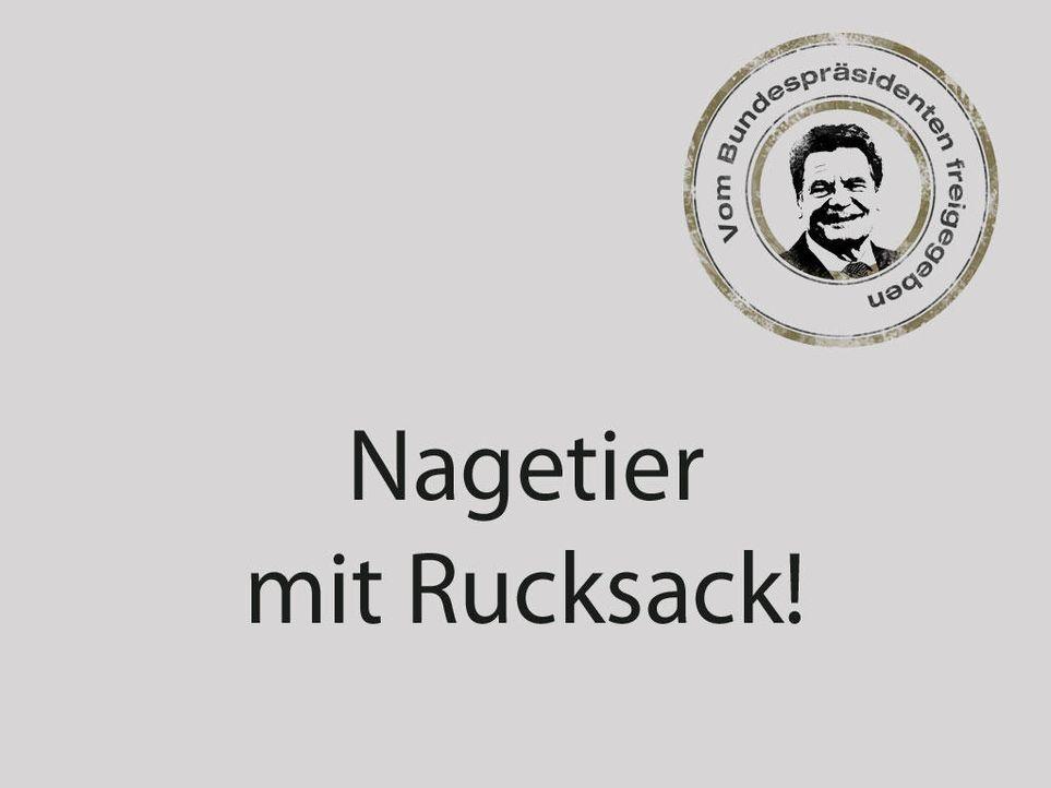 sackratte2jpg - Bildquelle: ProSieben