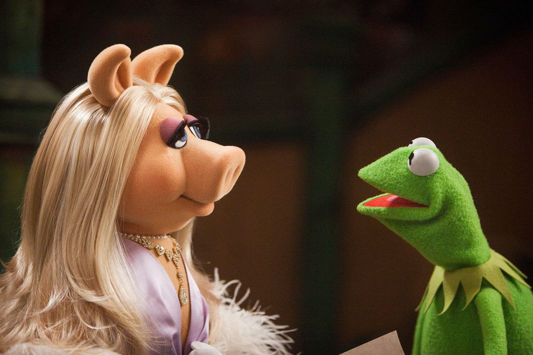 muppets-21-disney-enterprises-incjpg 1900 x 1267 - Bildquelle: Disney Enterprises Inc.