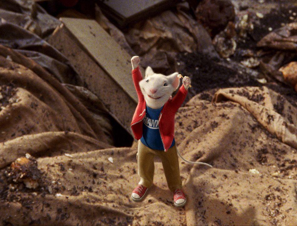 Stuart Little, die aberwitzige Maus, macht sich auf die Suche nach einem verschwundenen Freund, den Vogel Margalo ... - Bildquelle: 2003 Sony Pictures Television International. All Rights Reserved.