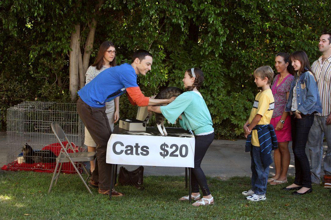 Nachdem sich die Katzen von Sheldon (Jim Parsons, 2.v.l.) schlagartig vermehrt haben, müssen er und Amy (Mayim Bialik, l.) sich von den Tieren tren... - Bildquelle: Warner Bros. Television