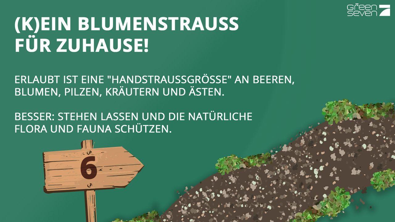 Keine Blumen pflücken - Bildquelle: ProSieben