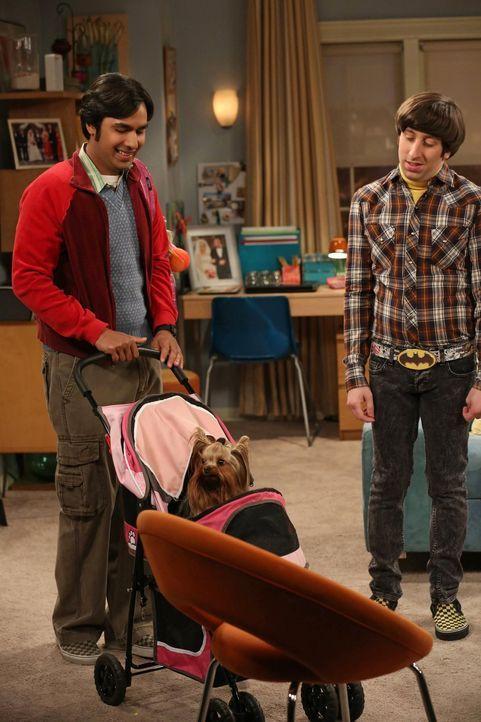 Raj (Kunal Nayyar, l.) muss übers Wochenende arbeiten und bittet Howard (Simon Helberg, r.), sich solange um sein Hündchen Cinnamon zu kümmern. Obwo... - Bildquelle: Warner Bros. Television