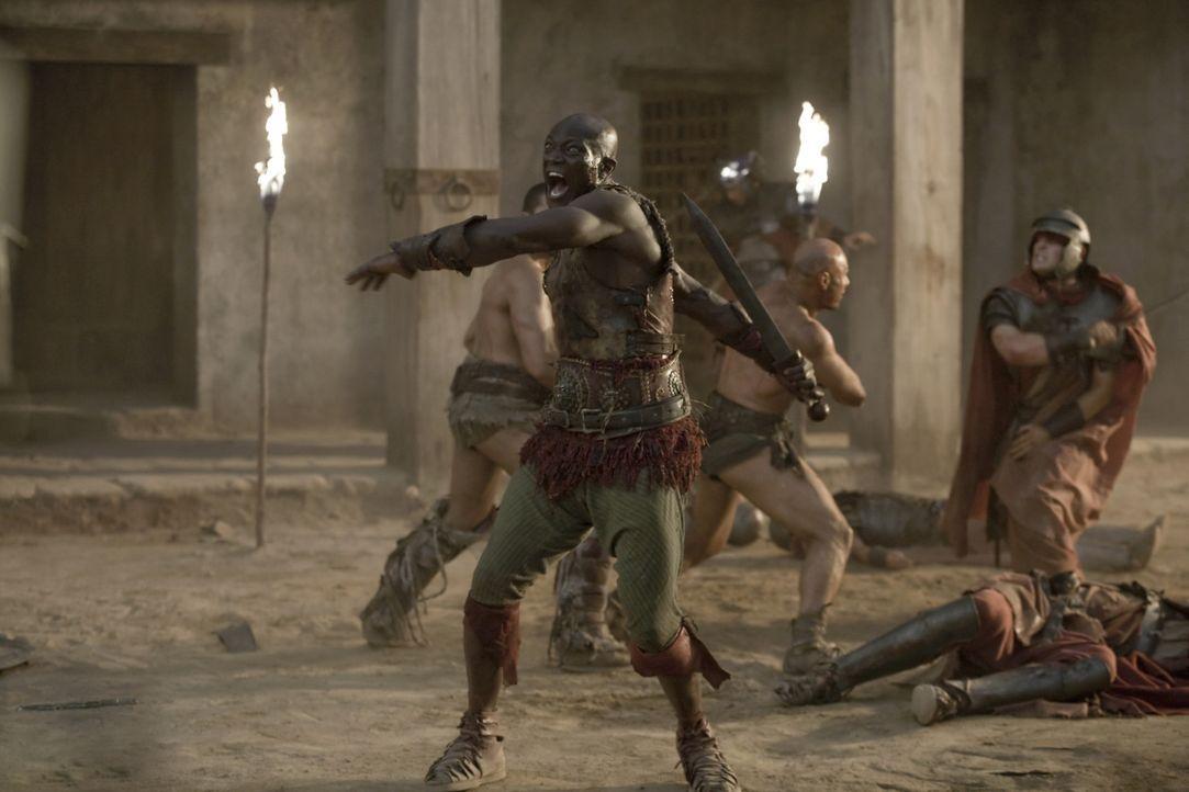Nehmen blutige Rache an ihren Peinigern: Spartacus, Drago (Peter Mensah) und die restlichen Gladiatoren ... - Bildquelle: 2010 Starz Entertainment, LLC