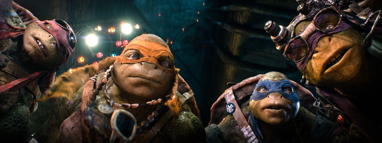Die mutierten Riesenschildkröten Raphael (Alan Ritchson, l.), Michelangelo (Noel Fisher, 2.v.l.), Leonardo (Pete Ploszek, 2.v.r.) und Donatello (Jer... - Bildquelle: MMXIV Paramount Pictures Corporation. All Rights Reserved.